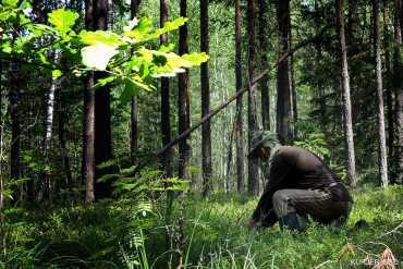 Печальный финал: В Закарпатье после 8 дней поисков обнаружили пропавшего человека, но увы, мертвым