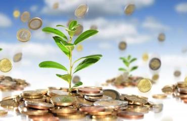 Закарпаття. Реалізація транскордонної Програми сприятиме залученню іноземних інвестицій до 10 мільйонів гривень
