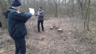 В Ужгороде полиция начала расследовать вопиющее преступление, совершенное в Боздошском парке