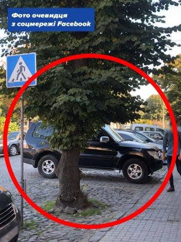 За автооленя в центре Ужгорода стало стыдно даже прохожим