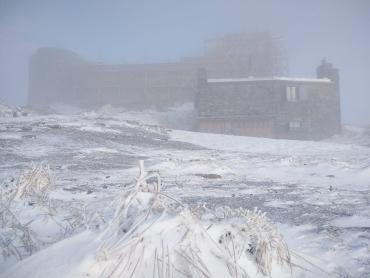 Удивительное фото сделали сегодня утром в Закарпатье