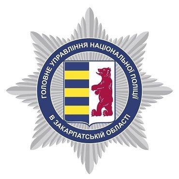 Восемь краж за сутки удалось раскрыть правоохранителям в Закарпатье