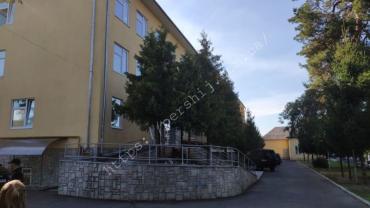 Появились новые подробности отравления школьников в Закарпатье