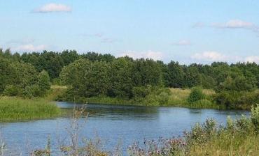 На Закарпатье больше суток искали тело рыбака на дне Тисы