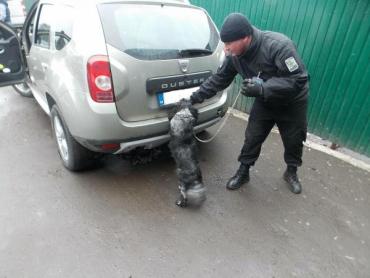 Иностранцу не удалось скрыть от пограничников оружие в машине