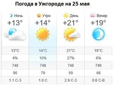 Прогноз погоды в Ужгороде на 25 мая 2019