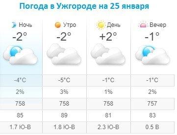 Прогноз погоды в Ужгороде на 25 января 2020