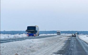 Жуткое ДТП на трассе Киев-Чоп: Бревна влетели в салон автобуса, есть пострадавшие