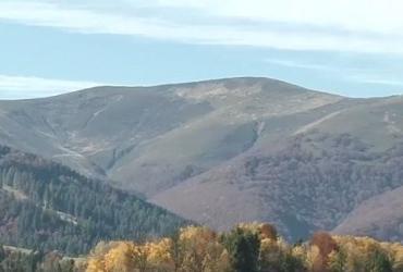 Туристов в осенних горах на Закарпатье хоть отбавляй