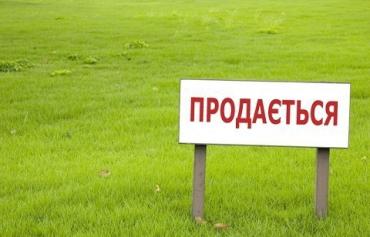 Слуга народа зарегистрировала новый законопроект о рынке земли