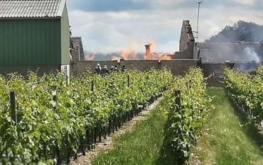 Во французском регионе Коньяк пожар уничтожил колоссальные запасы благородного напитка