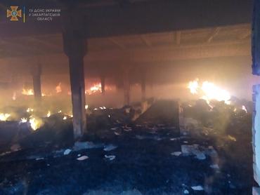 В Закарпатье масштабный пожар превратил предприятие в руины