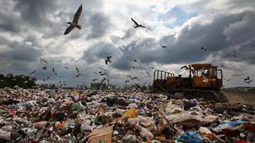 """""""Сонячне"""" Закарпаття: тонни сміття не лікують, а заганяють відпочиваючих """"у гроб"""""""