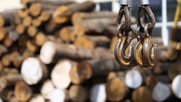 Закарпатські нардепи В. Петьовка, Р. Горват і В. Лунченко підтримали новий Закон про збереження лісів
