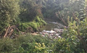 """Закарпатье наконец """"проснулось"""" и решило ликвидировать мусорные """"пробки"""" на реках"""