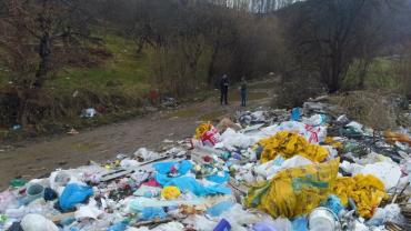 Одна из проблем Закарпатья обрела катастрофические масштабы