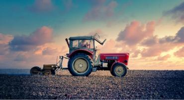 Завтра фермери Закарпаття вперше святкуватимуть День українського фермера