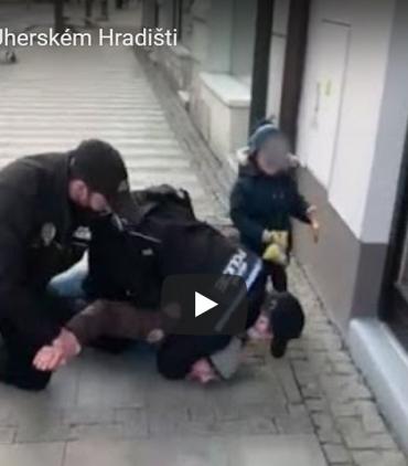 В Чехии на глазах плачущего ребёнка жёстко задержали его отца