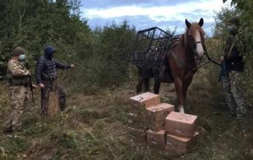 Кінну контрабанду зупинили автоматним вогнем на кордоні з Україною
