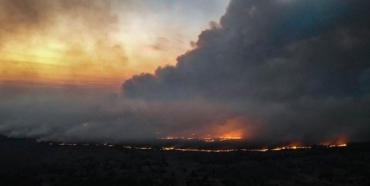 На что способна власть?: Печальные последствия недавних пожаров не радуют