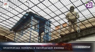VIP-камеры, побег и проблемы: В Ужгороде устроили проверку в тюрьме