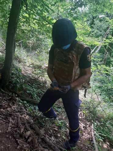 Опасную находку в лесу обнаружил житель Закарпатья (ФОТО