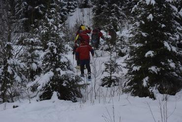 Горные спасатели Закарпатья ищут пропавшую туристку из Днепра