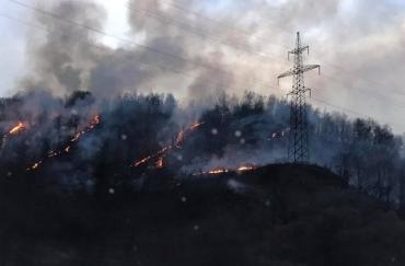 В горах, возле закарпатского села Сусково горит лес