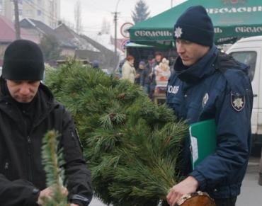 Недобросовестных продавцов елок в Ужгороде штрафуют