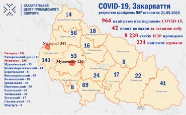В Закарпатті третина нових випадків COVID-19 - медики: Статистика на 21 травня