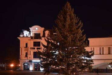 На Театральной в Ужгороде установили главную елку