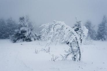 Опасность, гололедица и снег: Зима в Закарпатье таки придет