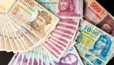 В Венгрии собирают подписи за отмену выплаты пенсий жителям Украины
