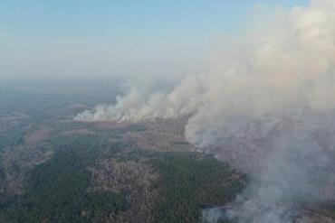 Группа специалистов МВД ведет расследование причин масштабных возгораний