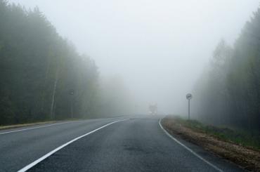 Вниманию водителей: Завтра в Закарпатье придут густые туманы