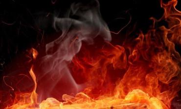 В Закарпатье при пожаре обнаружили обугленные тела животных