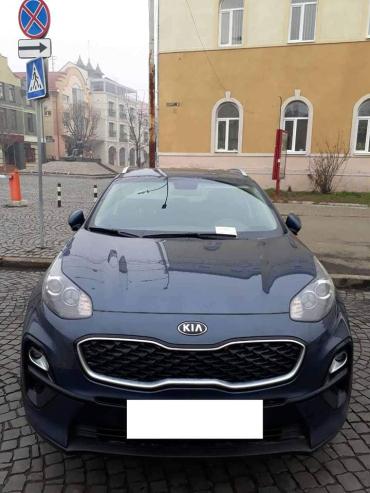 Массовая тупость: В Мукачево за 2 дня наказали около двухсот автооленей