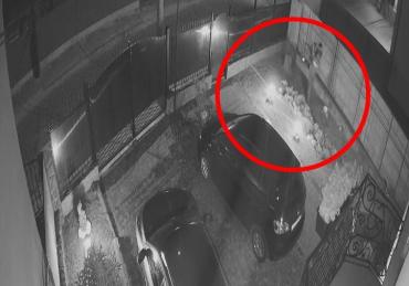 Нужна помощь горожан: В Мукачево камеры засняли, как вор проник во двор частного дома и совершил кражу