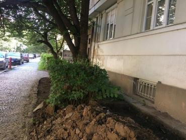 Галичанська банда Андріїва продовжує спотворювати історичне обличчя Ужгорода
