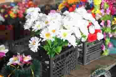 В одном из городов на Закарпатье ввели запрет на определенный вид цветов