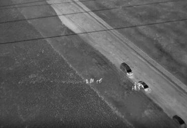 Спецоперация в Закарпатье: Привлекли воздушную разведку, перехвал был в подсолнечном поле