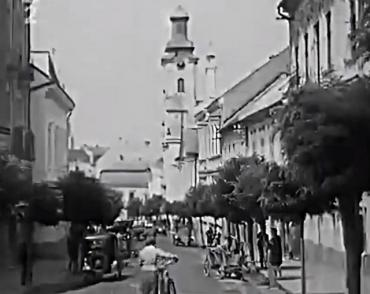 Архивные кадры вековой давности про Ужгород опубликовали в соцсети
