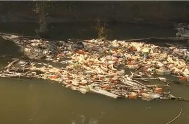 """Ролик зі знайденими на Закарпатті у річковому смітті рештками людини """"гуляє"""" інтернетом"""