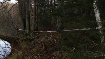 В Закарпатье у границы обнаружен труп нелегального мигранта