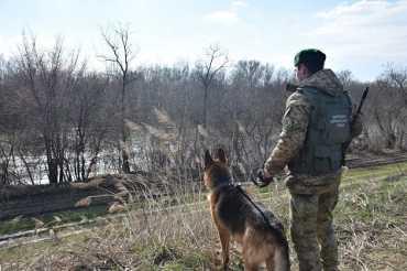 В Закарпатье, за 5 метров до границы, пограничники задержали заробитчанина-неудачника
