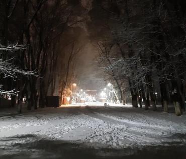 В Ужгороде пресекли незаконное отчуждение недвижимости в Боздошском парке