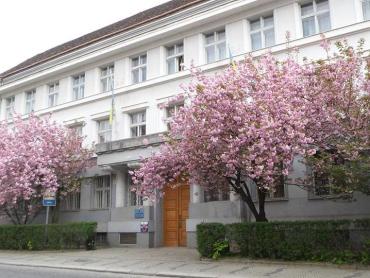 У судьи Закарпатского апелляционного суда официально подтвержден коронавирус