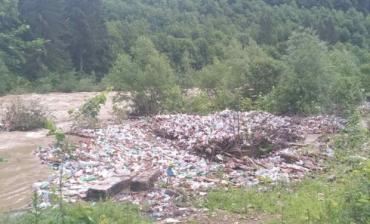 Большая вода в Закарпатье вынесла тонны мусора на берега