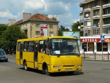 """На компенсаціях автоперевізникам сімейство мера Ужгорода Андріїва щороку """"заробляє"""" 32 мільйони гривень!"""