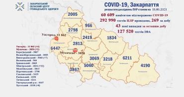 В Ужгороде более 3500 человек на самоизоляции: Статистика в Закарпатье на 11 мая